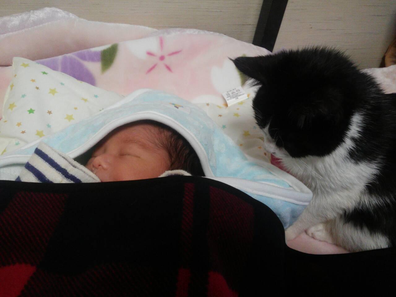 キーさん、赤ちゃんと御対面の巻