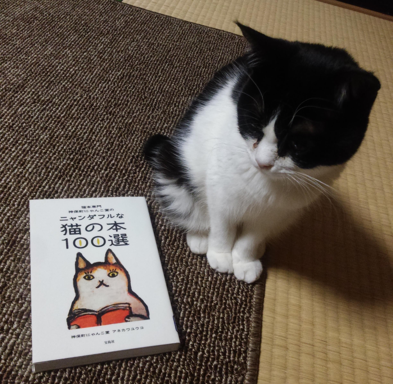 【猫本専門 神保町にゃんこ堂のニャンダフルな猫の本100選】は猫好きには是非ともお勧めしたい本でした。